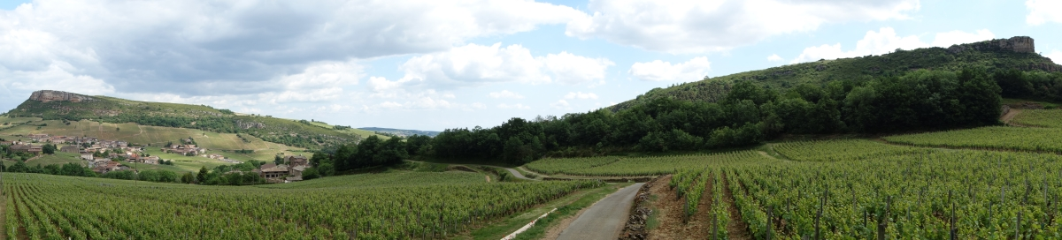 Panorama des roches de Vergisson & Solutré