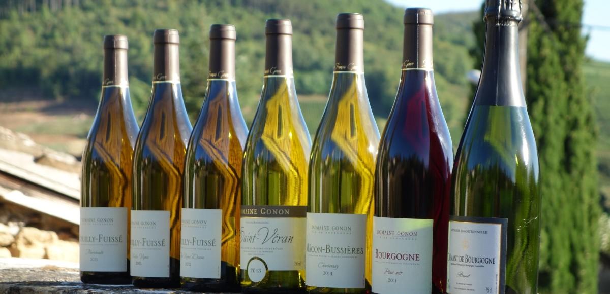Domaine_Gonon_Vins_Bourgogne